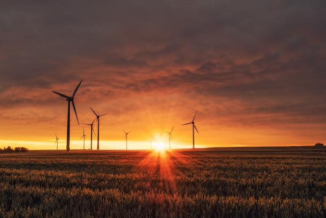 'Fit for 55' Package: New Climate Roadmap for the EU